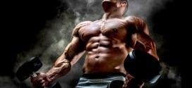 The Testosterone Hypothesis Roy Barzilai Testosterone Herland Report