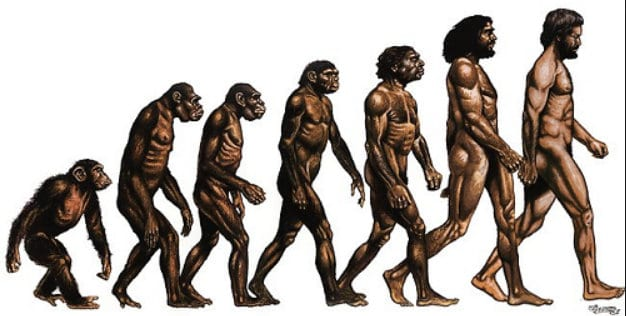 Darwinism remains a theory, was never proven: