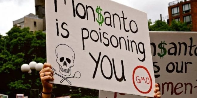 Is Capitalism Killing Us? The spread of poison and pollution #Monsanto –  Dr. Paul Craig Roberts, Herland Report