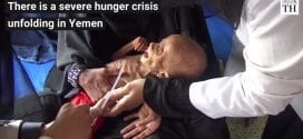 Yemen The Hindu