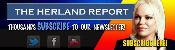 The EU forgot to defend Europeans Herland Report banner